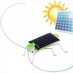 Saltamontes Solar - Se Mueve Rapido y Hace Mucho Ruido